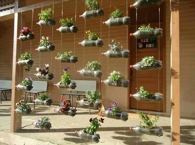Recycled plastic soda bottles for planters.