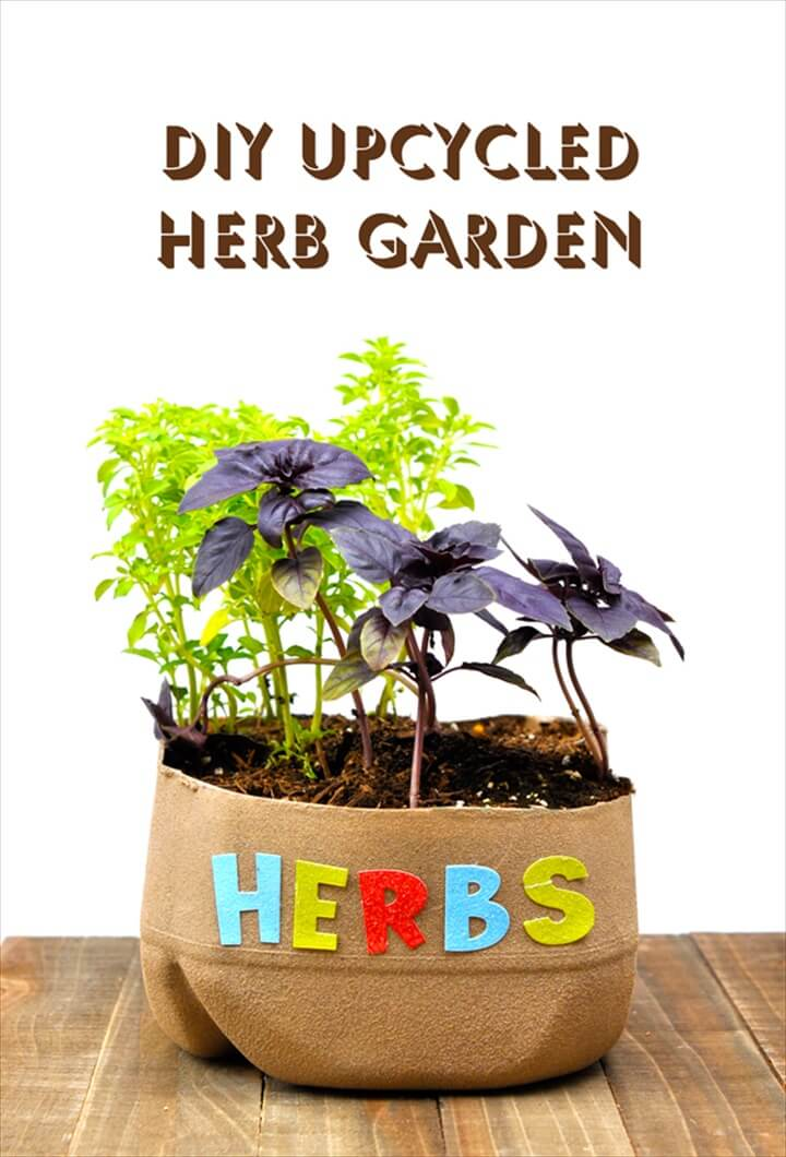 Herb Gardens To Practice Your Green Thumb With