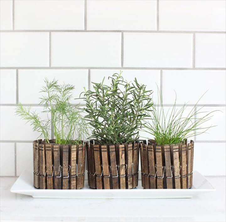 DIY Clothespin planters works well for a window sil herb garden.