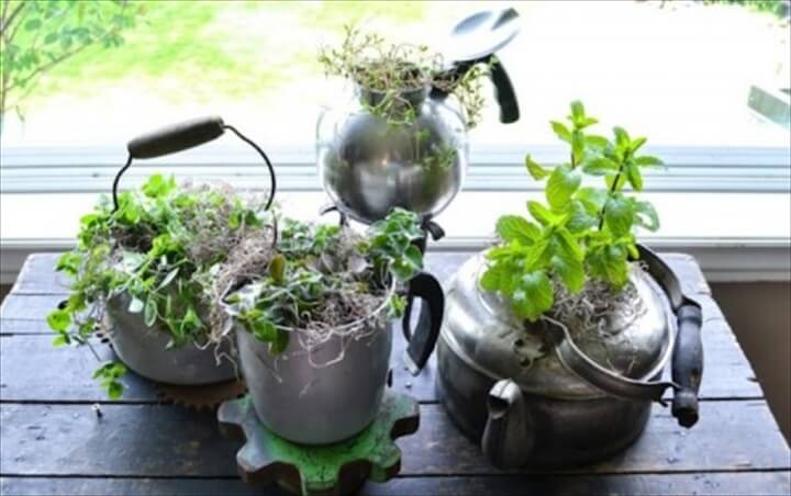 Vintage Kettles planters