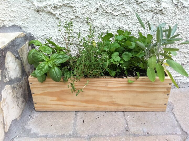 Garden Herb Beds Racks