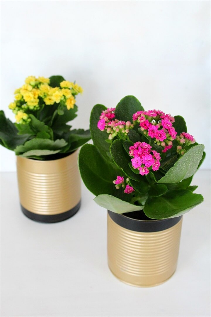 Easy DIY Tin Can Flower Pots