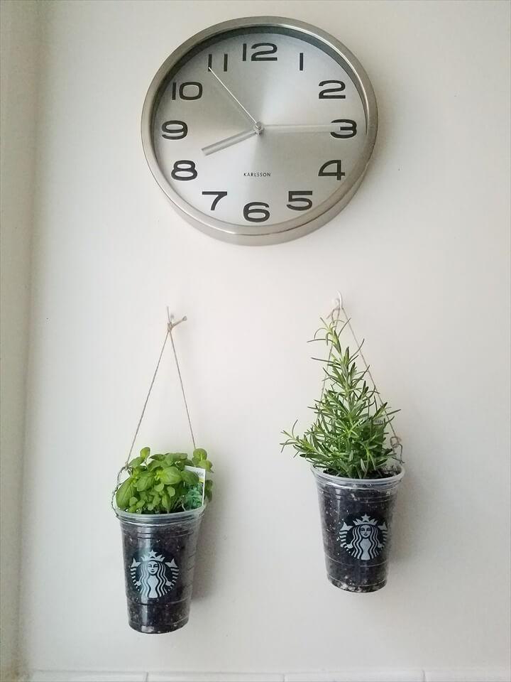 DIY Hanging Starbucks Cup Herb Garden