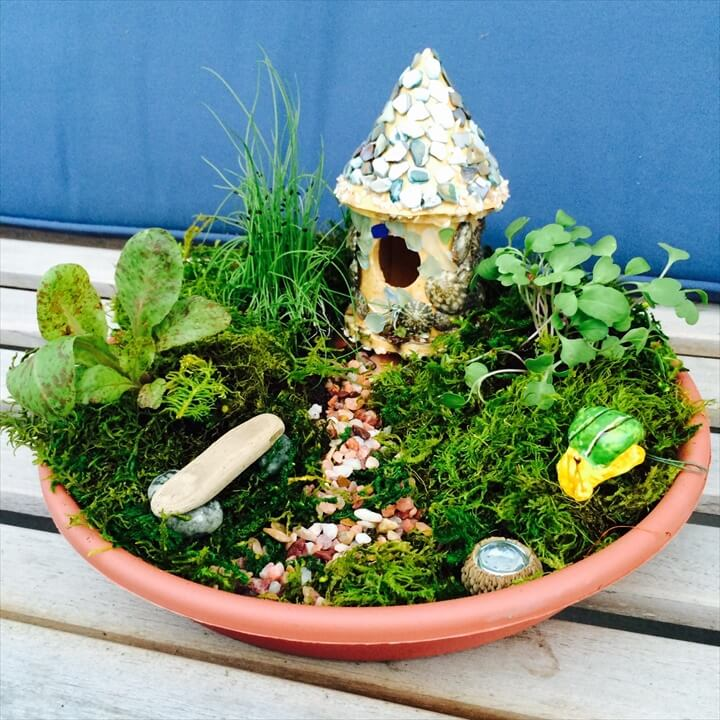DIY Herb Fairy Garden at Oddyssea in Half Moon Bay