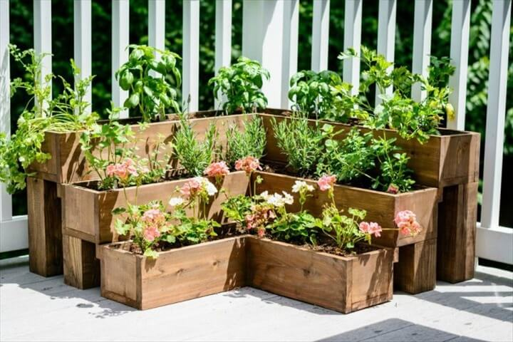medicinal herb garden on your patio