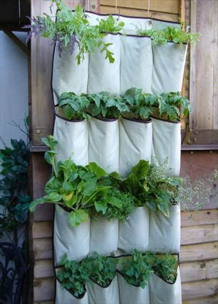 Shoe Organizer herb planters