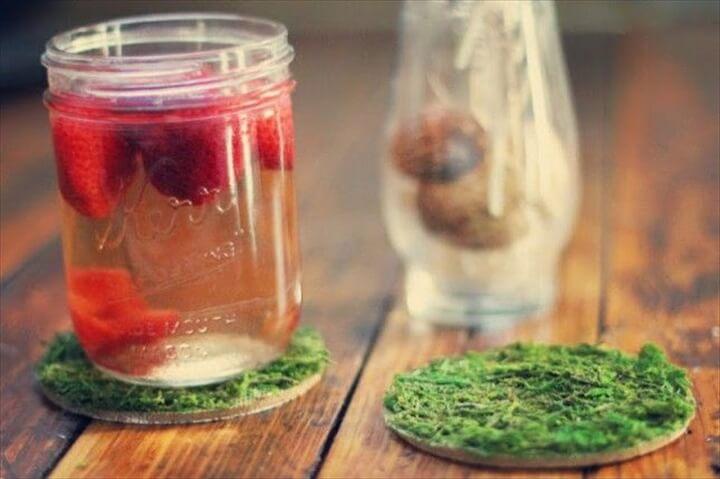 DIY Nice Moss Coasters