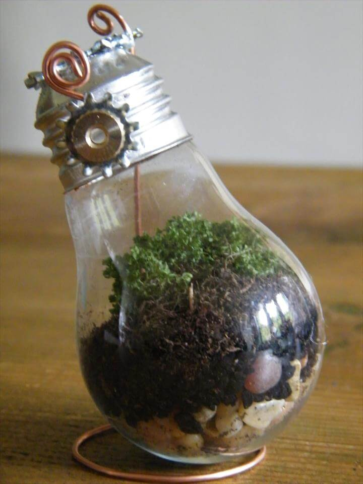 DIY Tutorial: Recycling Old Light Bulbs to Create Beautiful Mini Terrariums