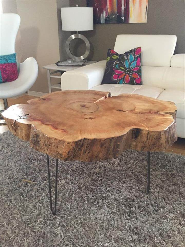 Tree Trunk Table with Metal Legs, Wood Coffee table with hairpin legs