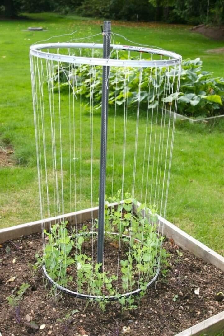 Exceptional DIY Trellis Ideas For You Garden
