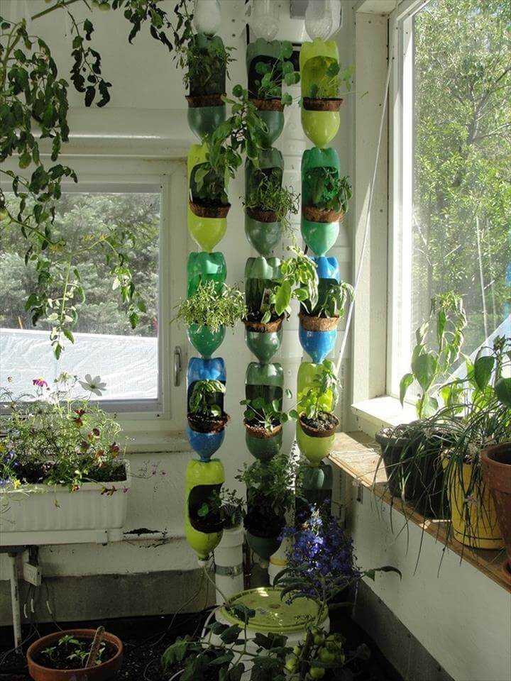 DIY Vertical Garden Plastic Bottles