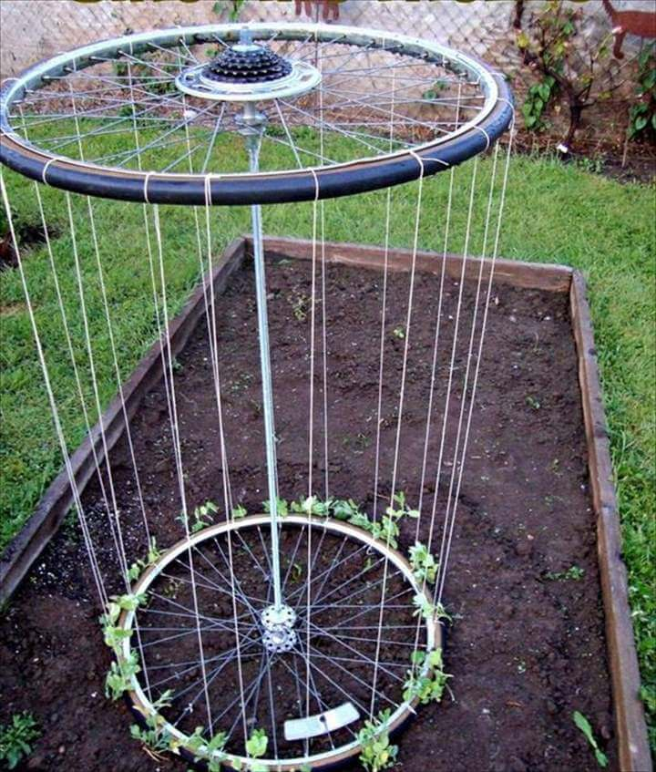 DIY Recycled Bike Wheels Trellis: