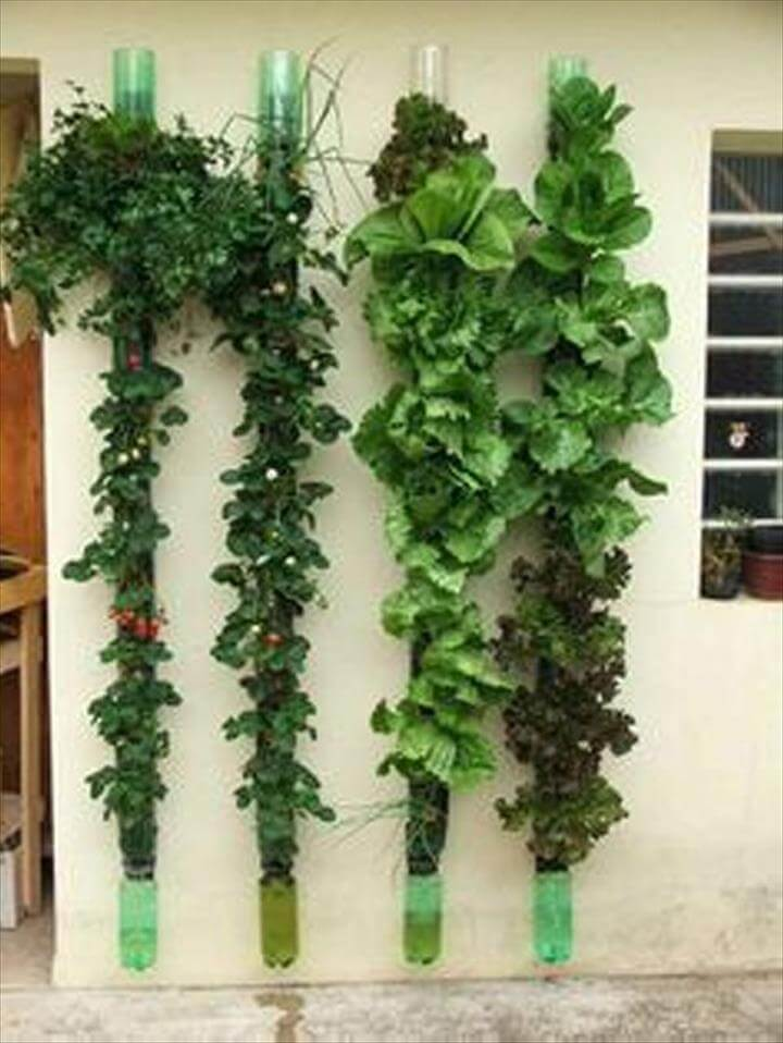 Recycled Plastic Bottles Vertical Gardening