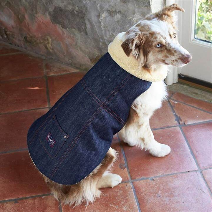 Shearling Denim Dog Jacket