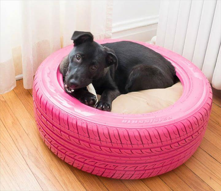 Pet are safe in tires