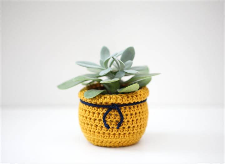 crochet plant cozy Items - Share crochet plant cozy Items