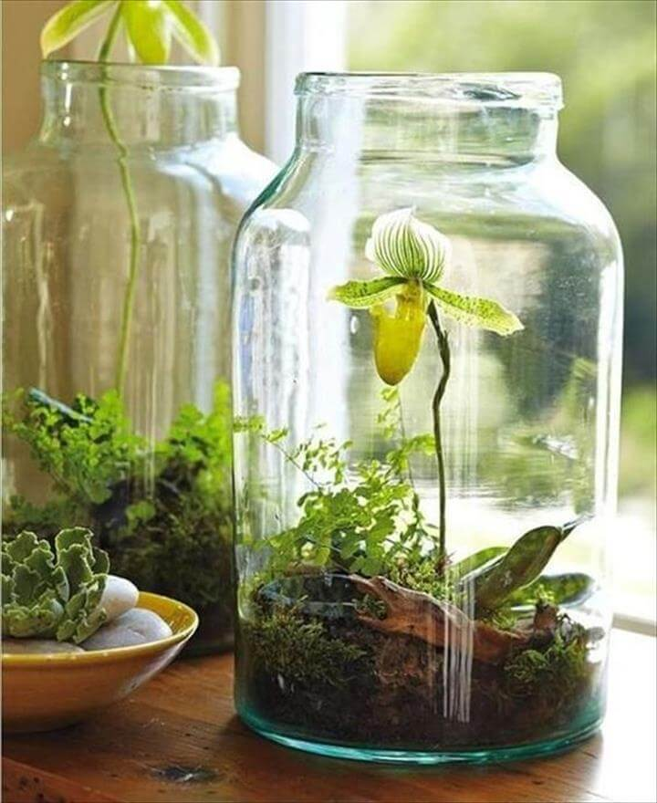 DIY Mason Jar Garden Planter