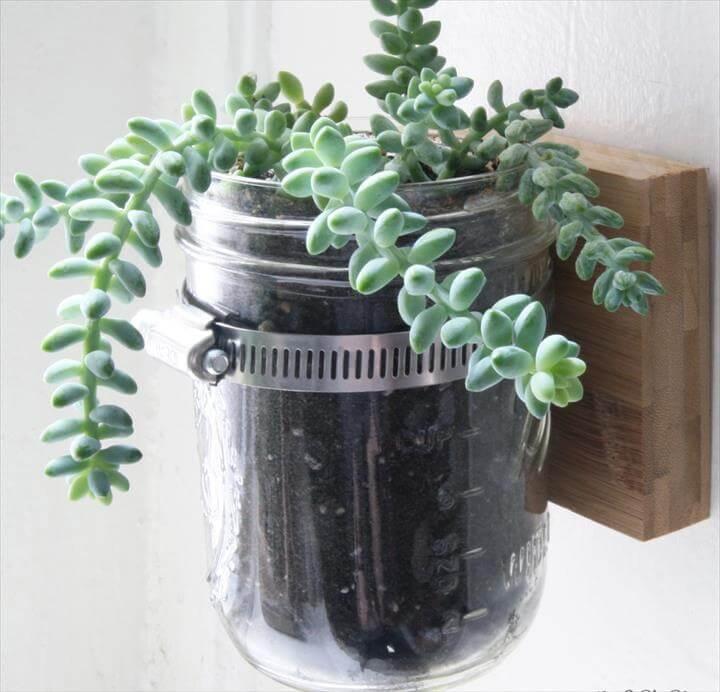 Mason jar planter, Hanging mason jars and Planters