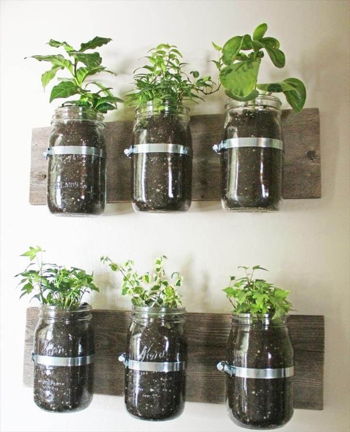 Indoor herbs, Herbs garden and Hanging herb gardens