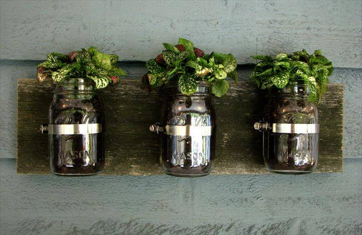 Mason Jar Wall Planter / Organizer Decor.