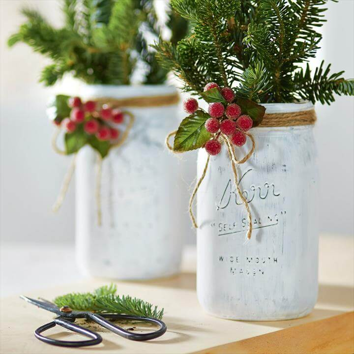 Mason Jar Seedling Planter