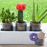 DIY Mason Jar Planter Box