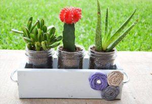 DIY Mason Jar Planter Box