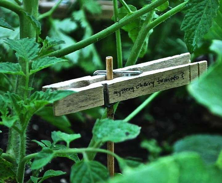 Garden markers and Herb marker