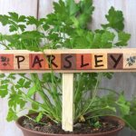 23 Gorgeous Easy To Make Plant Label & Marker