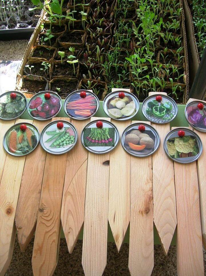 ehow garden plant marker stake juice lid picture