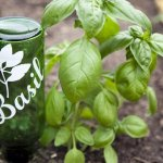 wine bottle garden marker basil