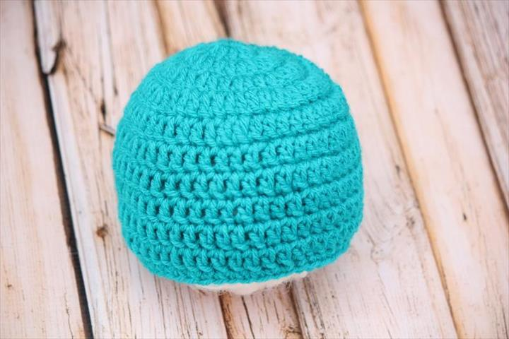 Basic Beginner Beanie FREE Crochet Pattern