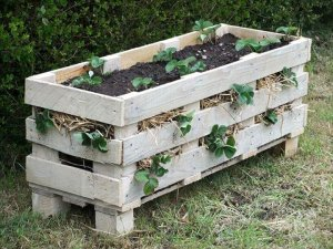 Amazing DIY Projects to Repurpose Pallets into Garden Planters --> Strawberry Pallet Planter