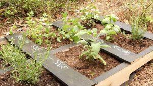 handmade pallet planter