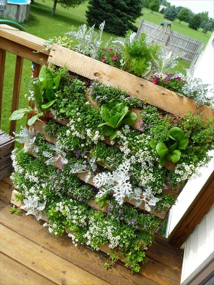 garden planter made out of pallets