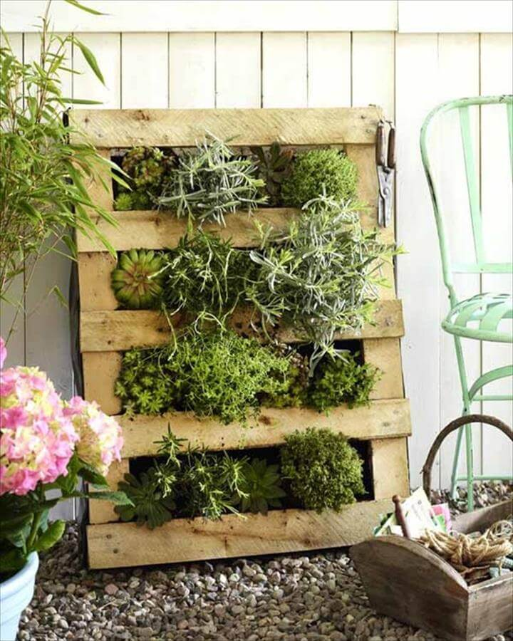 wall hanging pallet planters