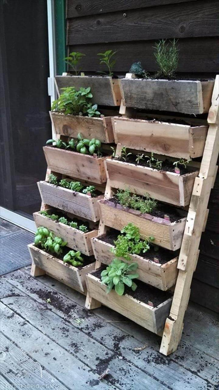 Vertical Pallet Planter wood pallet wall planters