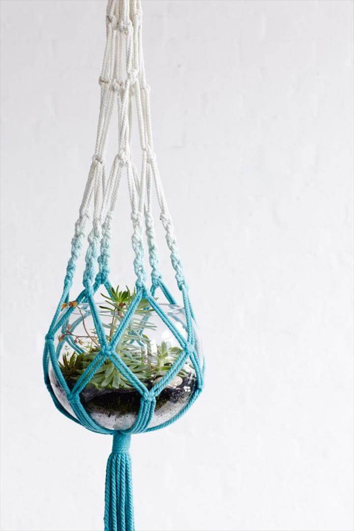 Plant Art Decor