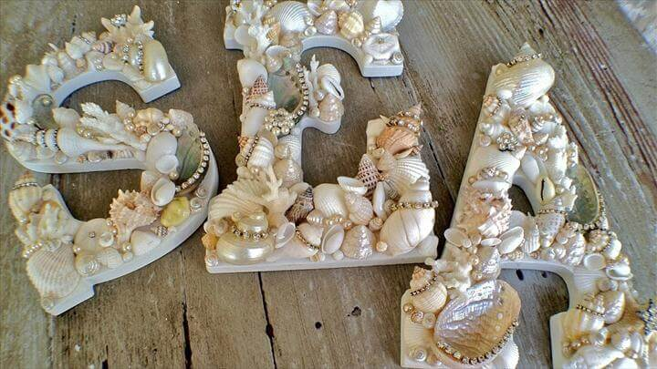 Best DIY Seashell Decor Ideas