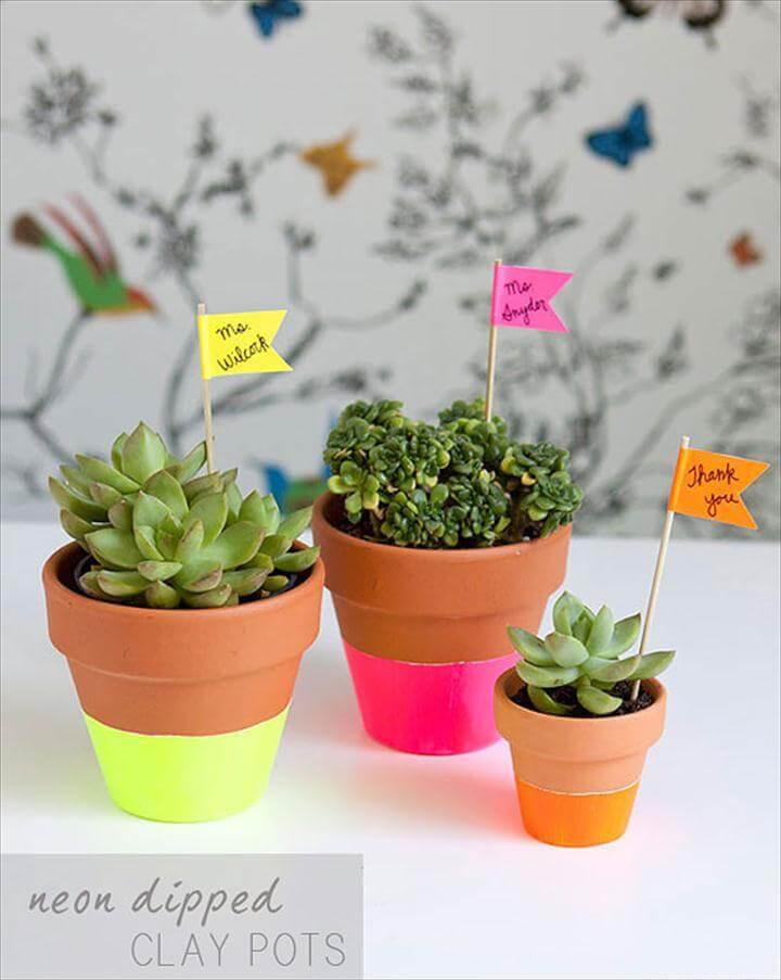 Succulents in DIY'd neon-dipped pots