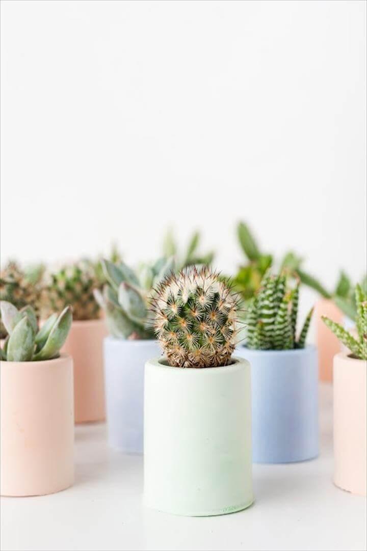 diy plaster planters