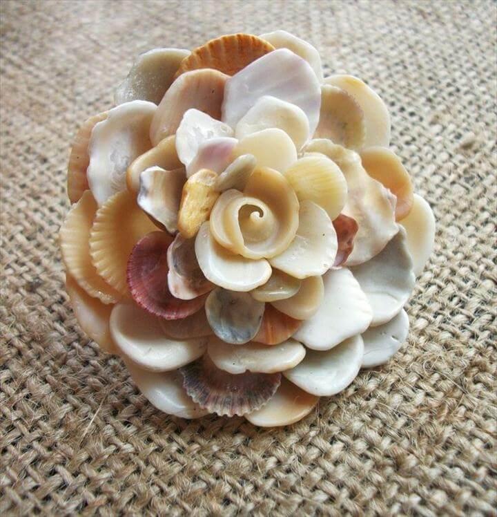 Seashell flower