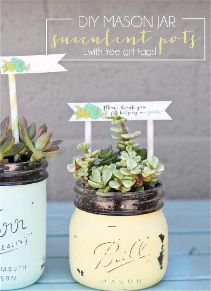 Mason Jar Succulents with Tags