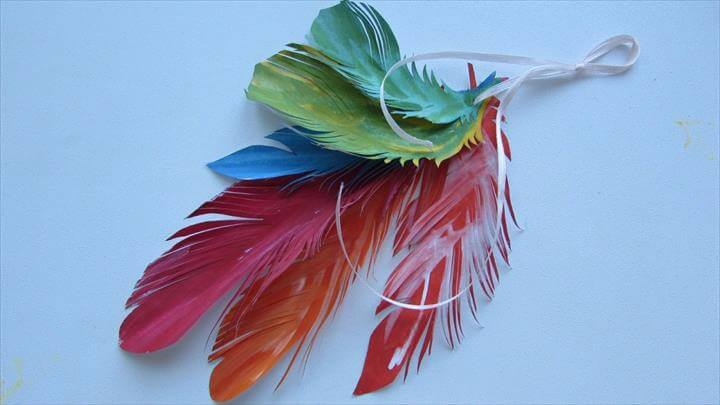 Colorful Feather Decorations