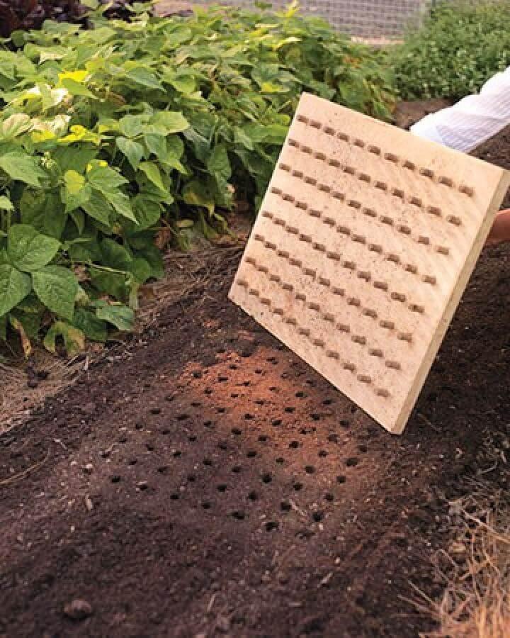 diy planting board, hanging planter, how to, diy crafts, diy gardeinig