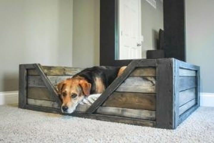recycled dog bed, recycled, diy ideas, diy crafts and projects