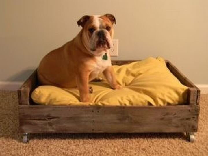 dog bed, pallet ideas, how to, diy ideas, diy crafts