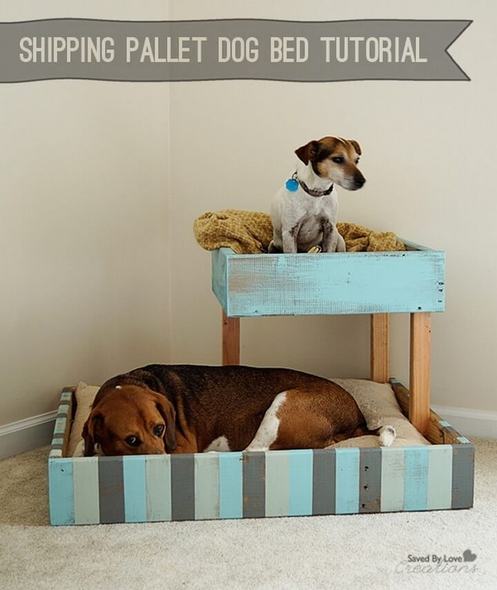 shipping pallet, dog house, dog bed ideas, dog pet bed, dog ideas