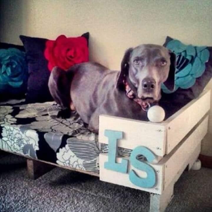 dog house, dog ideas, diy pet dog,