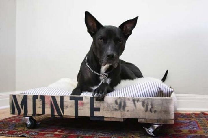 pallet ideas, how to, handmade ideas, dog house